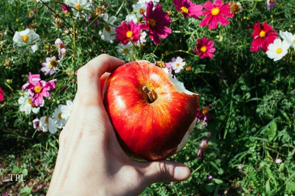 Enjoying Some Fruit in the Park