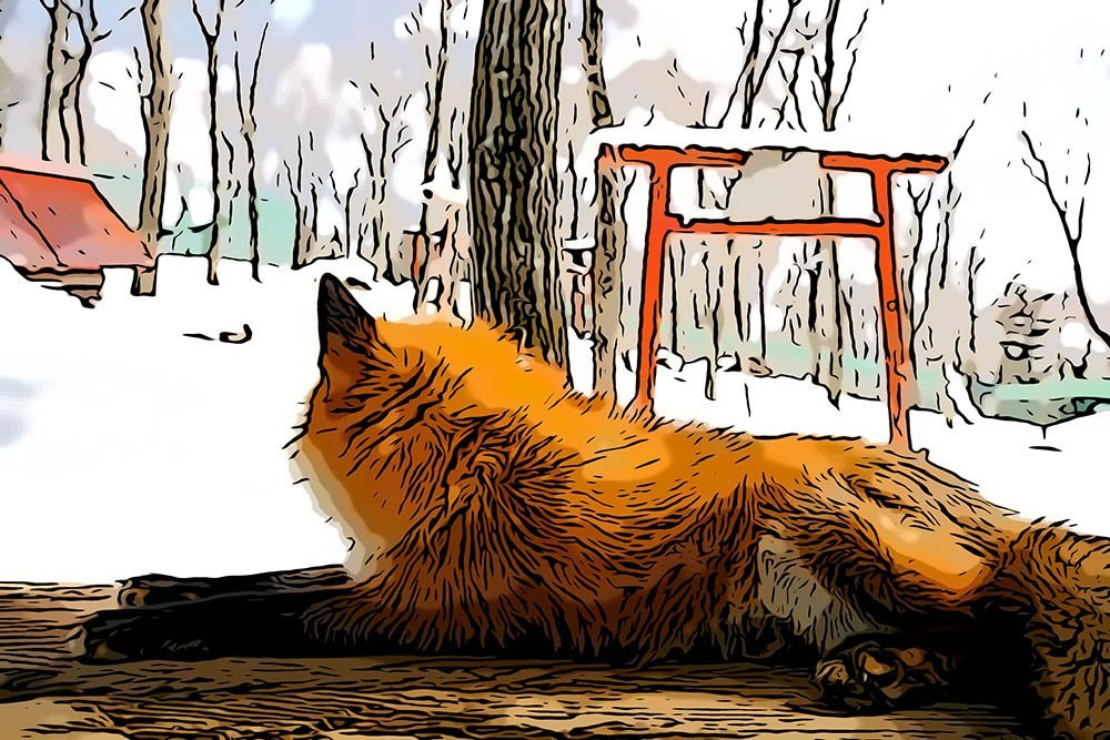 The Ultimate Guide to Zao Fox Village Japan: How to Get There