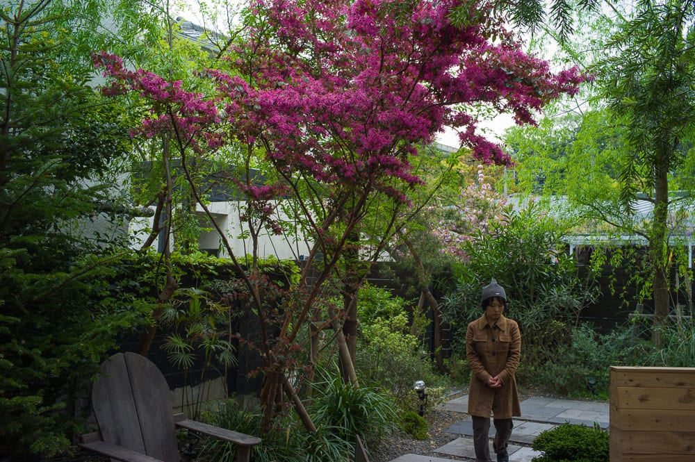 Exploring the Best Kamakura Gardens