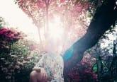 Ashikaga Flower Park Japan Travel Tips