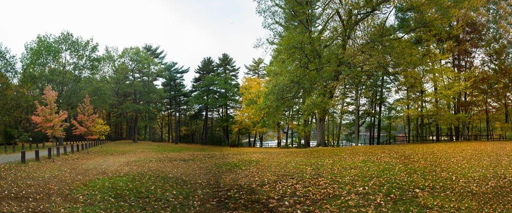 Fall in Concord