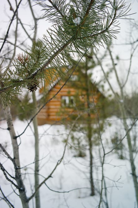 Our cabin in the woods in Whitehorse for the Northern Lights