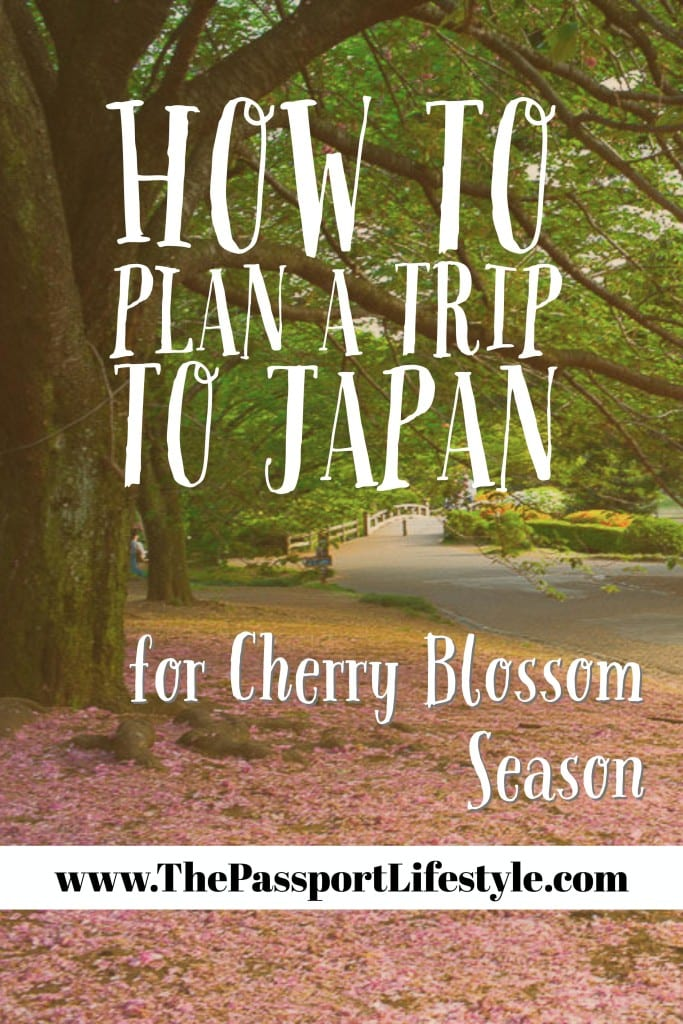 Cherry Blossom Season Japan: When Should You Visit? | The ...