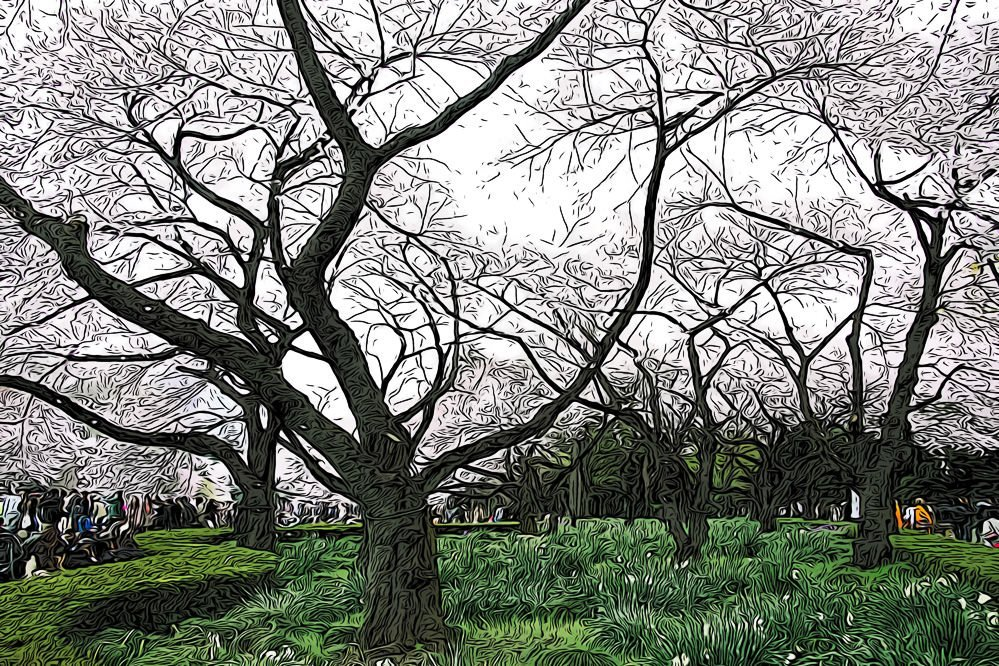 best gardens in tokyo