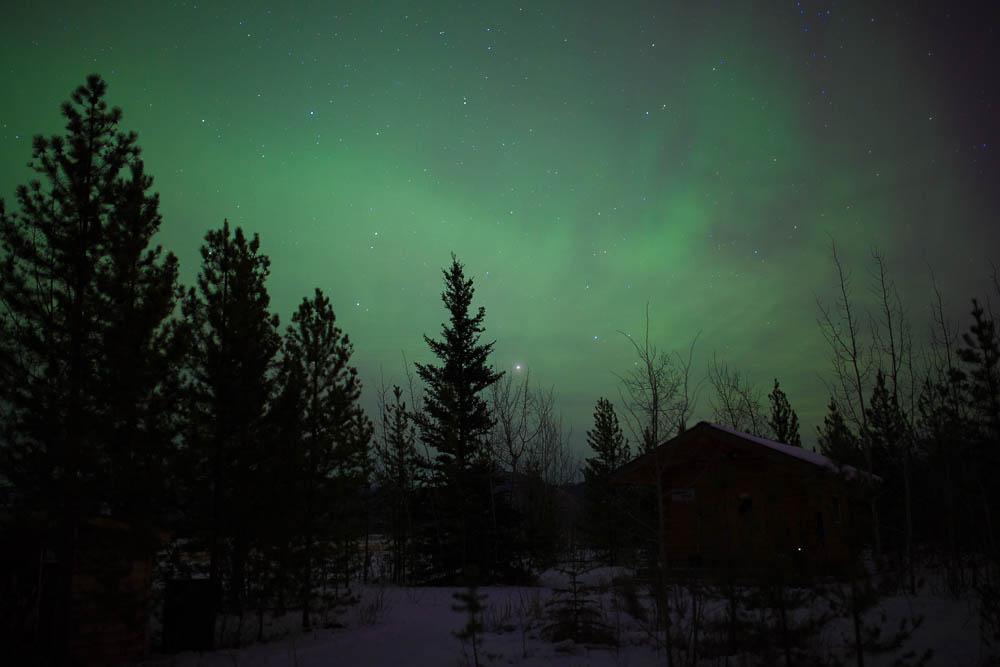 Yukon Lights