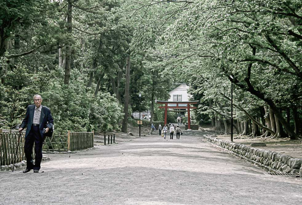 Kamakura Zen Buddhist Temple Hikes