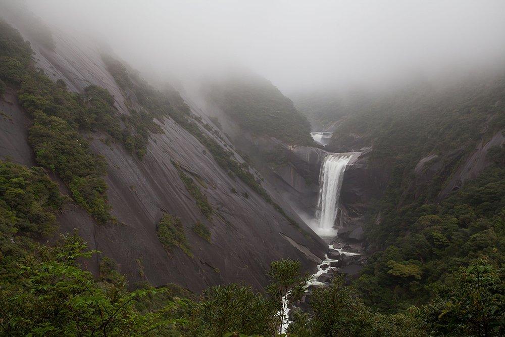 Japan Nature Yakushima